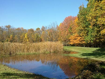 Meadowedge Pond, Cuyahoga Valley National Park, Ohio
